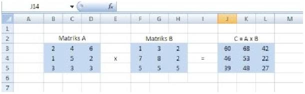 matriks10