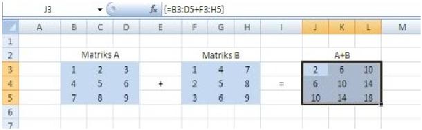 matriks3