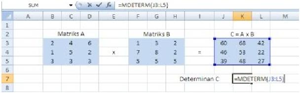matriks8